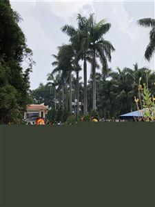 Công ty MHDI 10 đã đến dâng hoa, thắp hương tại Nghĩa trang Tây Tựu nhân kỷ niệm ngày Thương binh liệt sĩ